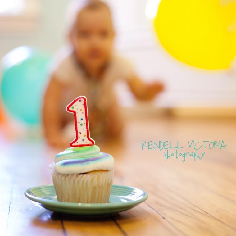 one year old cake smash photo session