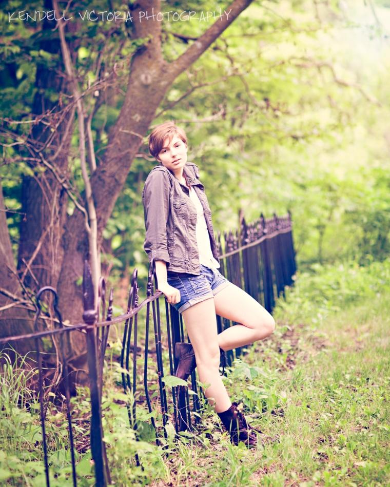wrought iron fence high school senior minneapolis