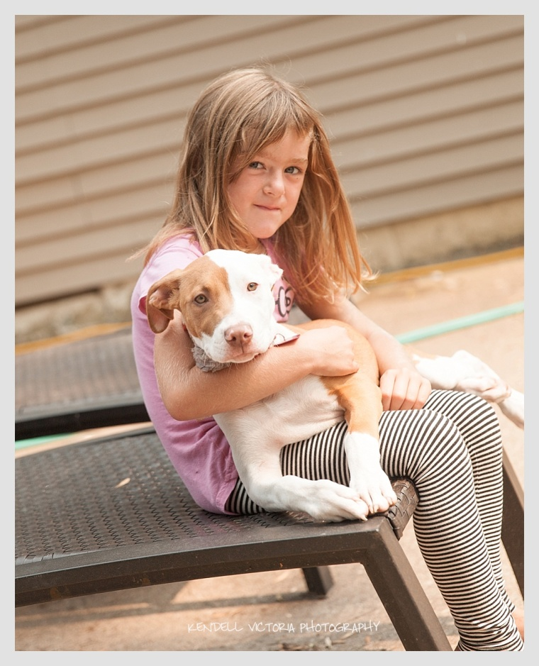 little girl with pit bull puppy