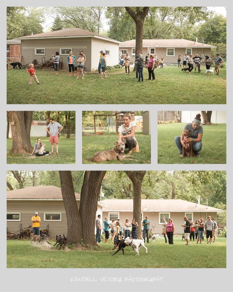 shh foster reunion, pit bulls, foster families